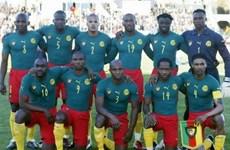 """""""Những chú sư tử châu Phi"""" Cameroon có còn bất khuất?"""