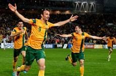 World Cup 2014: Australia không muốn làm kẻ lót đường