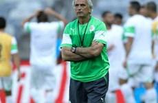 HLV Halilhodzic: Algeria sẽ chuẩn bị tốt khi gặp Hàn Quốc