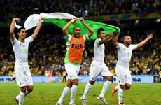 Đội tuyển Algeria được thưởng lớn sau kỳ tích vào vòng 1/8