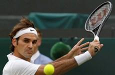 Wimbledon: Nole và Federer thoát hiểm, Halep vẫn thăng hoa