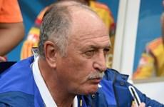 Scolari vẫn không từ chức sau thảm họa lịch sử của tuyển Brazil