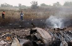Tám kịch bản giải thích tai nạn máy bay MH17 ở Ukraine