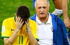 Brazil khó chọn người thay Scolari để vượt qua khủng hoảng