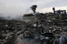 Đức, Pháp, Ba Lan ra tuyên bố chung về vụ rơi máy bay MH17