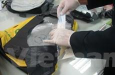 Bắt giữ một nữ du khách mang gần 4kg cocaine vào Việt Nam