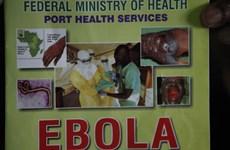 Ai Cập lo ngại khi phát hiện 8 người nghi nhiễm virus Ebola