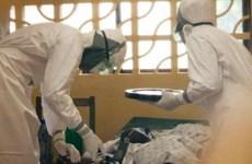 Bệnh nhân nhiễm virus Ebola đầu tiên ở Nigeria đã xuất viện