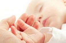 Hoócmôn EPO giảm đáng kể những tổn thương não trẻ sinh non