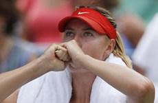 """Maria Sharapova ngậm ngùi dừng bước sau """"cuộc chiến sắc đẹp"""""""