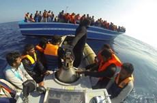 Hải quân Italy cứu gần 2.400 người nhập cư bằng đường biển