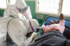 Mỹ triển khai lực lượng hỗ trợ dập dịch Ebola tại Tây Phi