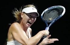 Địa chấn ở WTA Finals: Sharapova, Serena đua nhau gục ngã