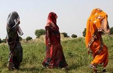 Ít nhất 8 phụ nữ Ấn Độ thiệt mạng sau phẫu thuật triệt sản