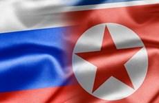 Hoạt động giao thương giữa Triều Tiên và Nga sụt giảm đáng kể