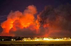 Cháy rừng lan rộng vượt khỏi tầm kiểm soát ở miền Nam Australia