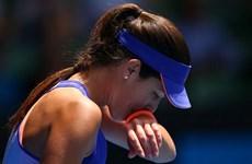 Australian Open 2015 đón nhận cú sốc: Ana Ivanovic gục ngã!