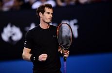Hạ Berdych, Murray lần thứ tư vào chung kết Australian Open