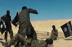 HĐBA LHQ có kế hoạch ngăn chặn nguồn cung tài chính của IS