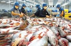 Mỹ áp đặt quy định khắt khe hơn đối với mặt hàng cá da trơn