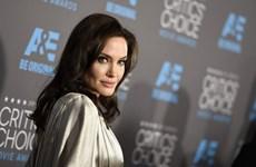 """Angelina Jolie đảm nhiệm vai trò đạo diễn của """"Captain Marvel""""?"""