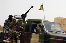Mali: MNLA yêu cầu các nhóm vũ trang thân chính phủ rời Ménaka