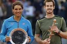 Andy Murray hạ bệ Rafael Nadal sau trận chung kết trong mơ