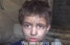 Sững sờ khi biết người dân Syria phải ăn cỏ để sống qua ngày