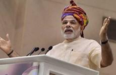 Chính phủ Ấn Độ nỗ lực tiến tới tự cung tự cấp dầu ăn, đậu lăng