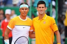 """Nadal - Djokovic cận kề """"đại chiến,"""" người đẹp Wozniacki thua sốc"""