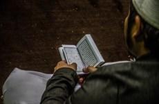 Ai Cập tuyên bố loại bỏ các ấn phẩm của MB tại các thánh đường