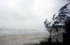 Bão số 1 ảnh hưởng và gây gió giật cấp 10-12 trên vịnh Bắc Bộ