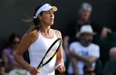 Wimbledon 2015: Ana Ivanovic thua sốc, Nishikori xin rút lui