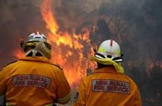Australia vật lộn khống chế cháy rừng bất thường trên Núi Xanh