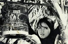Nhiều bộ phim nổi tiếng của Việt Nam được trình chiếu ở Paraguay