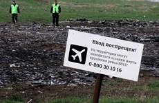 """Tạp chí danh tiếng của Mỹ đăng bài """"giải mã"""" đoạn ghi âm vụ MH17"""