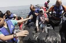 Chính phủ Đức đau đầu tìm lời giải bài toán khủng hoảng nhập cư