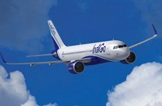 Hãng hàng không Ấn Độ chi 26 tỷ USD mua 250 máy bay Airbus
