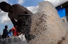 Indonesia dự báo thiếu hụt lượng gạo dự trữ trong năm 2016