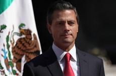 TPP củng cố tiến trình hội nhập và tiếp cận của Mexico và Chile