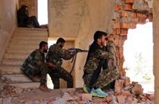 Syria: Người Kurd và đồng minh Arập thành lập liên minh mới