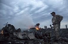 Những cột mốc của thảm kịch máy bay MH17 bị bắn rơi ở Ukraine