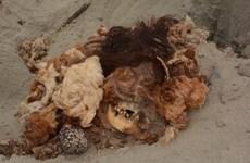 Phát hiện xác ướp phụ nữ có niên đại 2.000 năm tại Peru