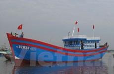 Ngư dân hạ thủy tàu vỏ gỗ 12 tỷ đồng đầu tiên tại tỉnh Thanh Hóa