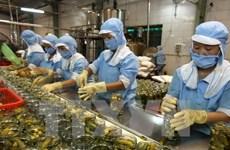 Fitch xếp hạng tín nhiệm Việt Nam mức BB- với triển vọng ổn định