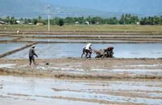 Chủ động điều tiết nguồn nước cho phát điện, sản xuất nông nghiệp