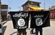 Phiến quân IS có thể kiểm soát một phần lãnh thổ Afghanistan