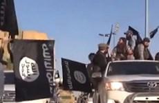 Israel truy tố 5 nghi can gốc Arab câu kết với phiến quân IS