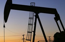 Giới chuyên gia dự báo giá dầu mỏ thế giới tiếp tục giảm sâu