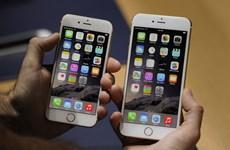 Rộ tin đồn Apple thu hẹp sản lượng iPhone 6S và iPhone 6S Plus